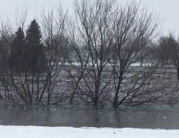 skunk creek flooding
